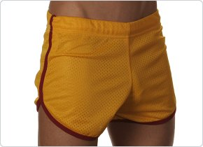 Andrew Christian Gold Mesh Gym Shorts