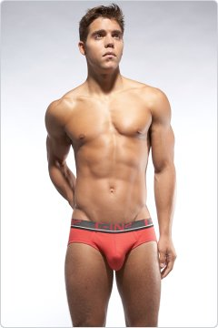C-IN2 Low No Show Brief Hibiscus
