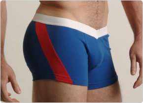 Go Softwear Royal and Red V-Front Slash Boxers