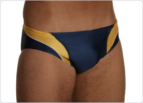 Speedo Axcel Splice Brief Navy/Gold