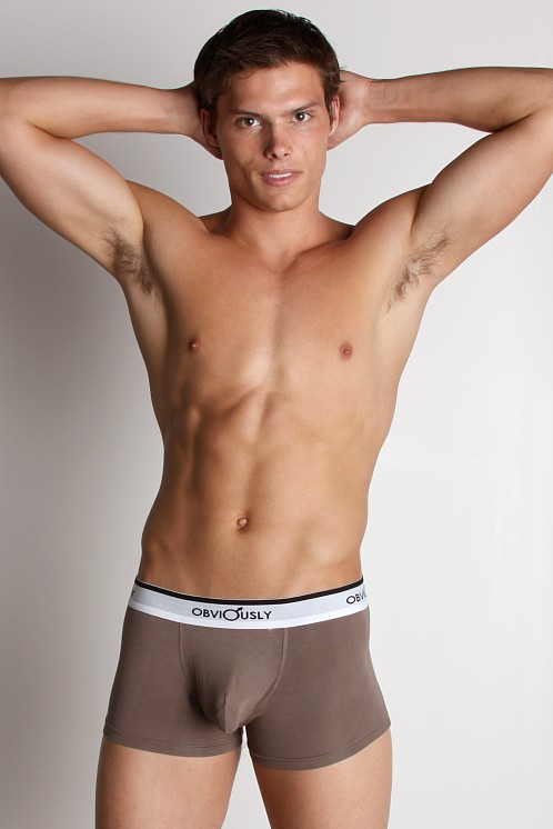 Obviously Sinuous Low Rise Boxer Brief Graphite