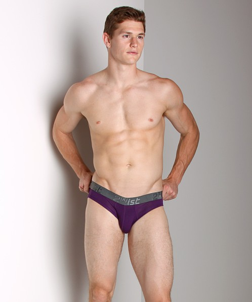 2xist Modal No-Show Brief Plum