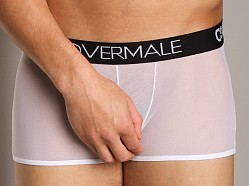 Cover Male Waisted Up Trunk Sheer White