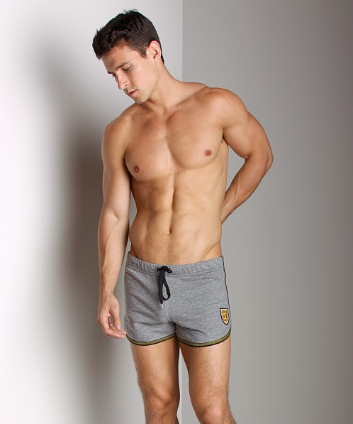 Andrew Christian Phys Ed Shield Fleece Shorts Heather