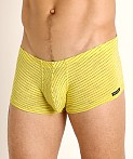Rick Majors Vintage Stripe Trunk Yellow, view 3