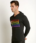 Speedo Rainbow Pride Hoodie Grey/Rainbow, view 3
