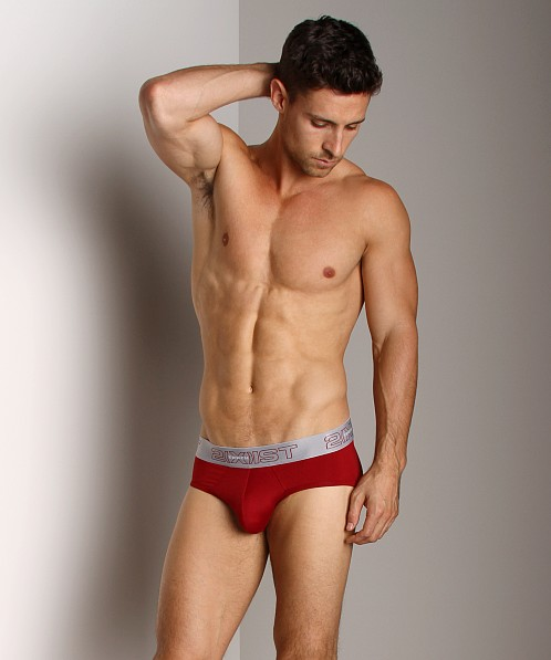2xist Touch Ultra Contour Pouch Brief Cranberry/Pebble