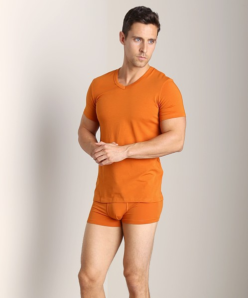 Wood V-Neck Tee Wood Orange