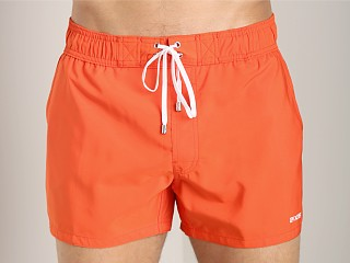 You may also like: 2xist Ibiza Woven Swim Shorts Mandarin