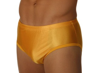 You may also like: Edge Gold Lycra Briefs