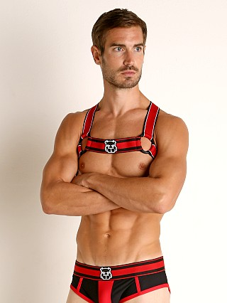 You may also like: Cell Block 13 Kennel Club Scout Harness Red