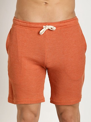 Complete the look: LASC Baby Waffle Gym Short Orange