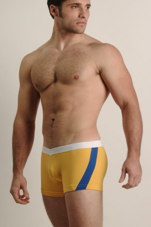 Go Softwear Gold and Royal V-Front Slash Boxers