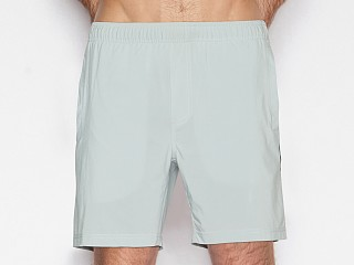 Model in flagpole grey C-IN2 Grip Athletic Jump Short