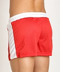 Jack Adams Air Mesh Gym Short Red/White, view 4